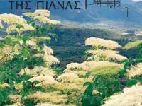 Τα νέα της Πιάνας -Τεύχος 74
